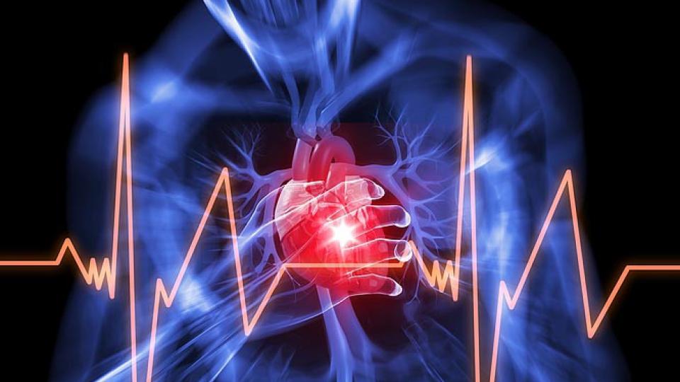 Сердечная аритмия и апноэ: как они влияют друг на друга